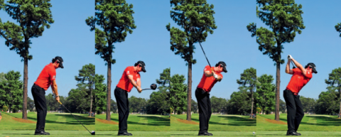 Tiger Woods und Rory McIlroy