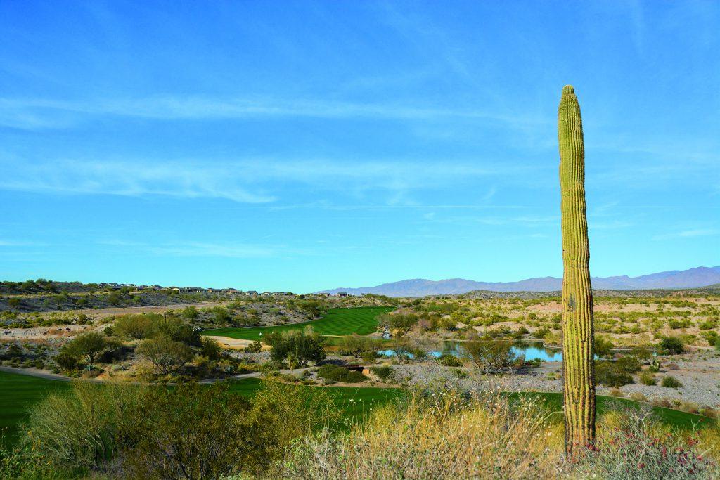 Entspannung gibt es beim Golfurlaub in Arizona auf jeden Fall im Golf- and Social Club Wickenburg Ranch. Hier: Blick auf Loch 15. Foto: I.v.Wilcke